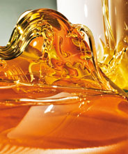 TREND SUGARING